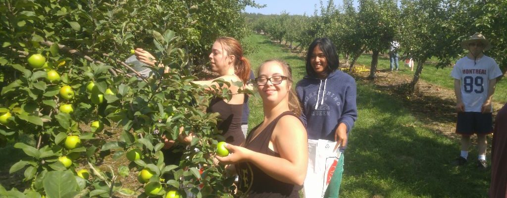 Users of Rougemont farm service picking apples in the fall