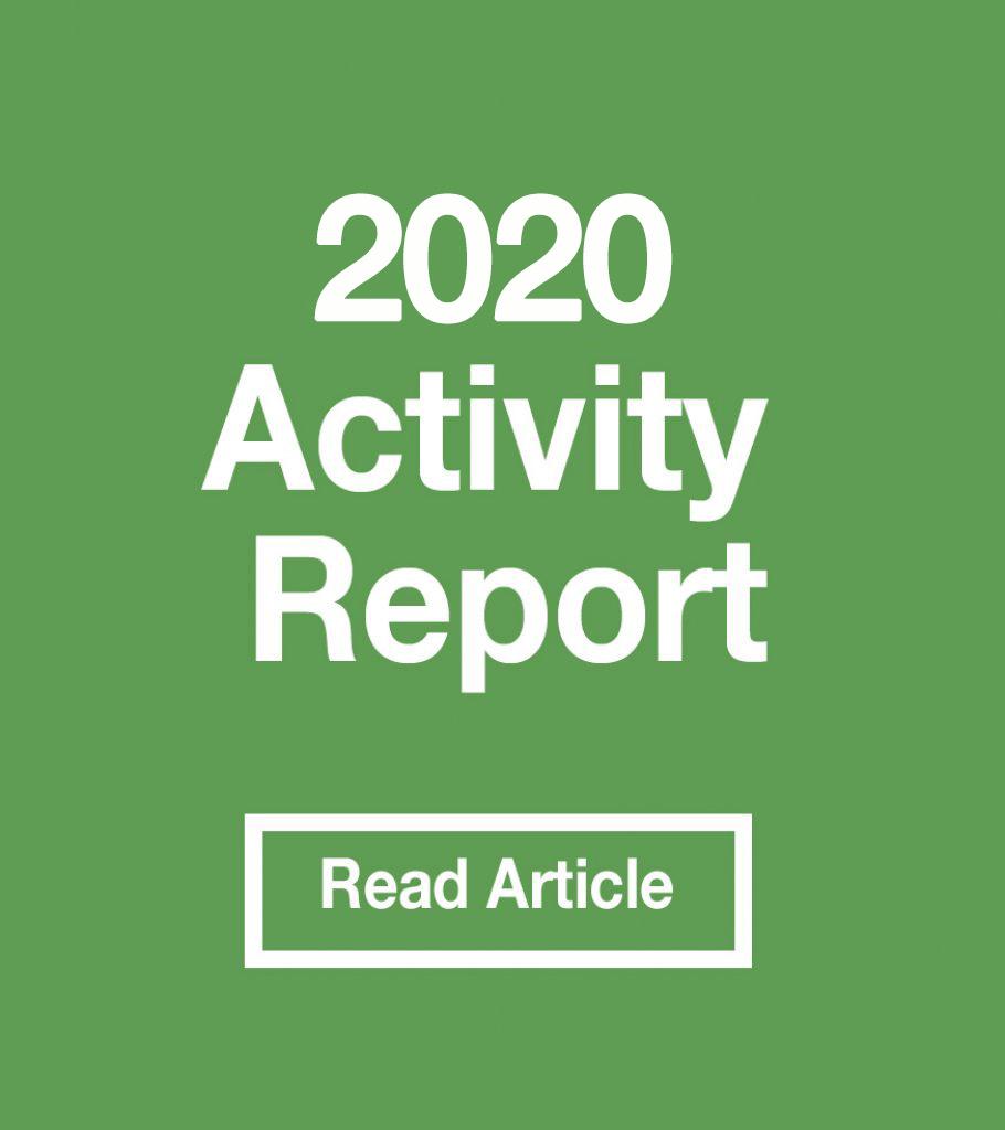 2020-activity-report