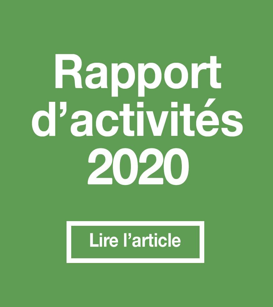 rapport-activites-2020